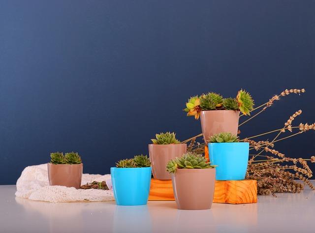 květináče na stole.jpg